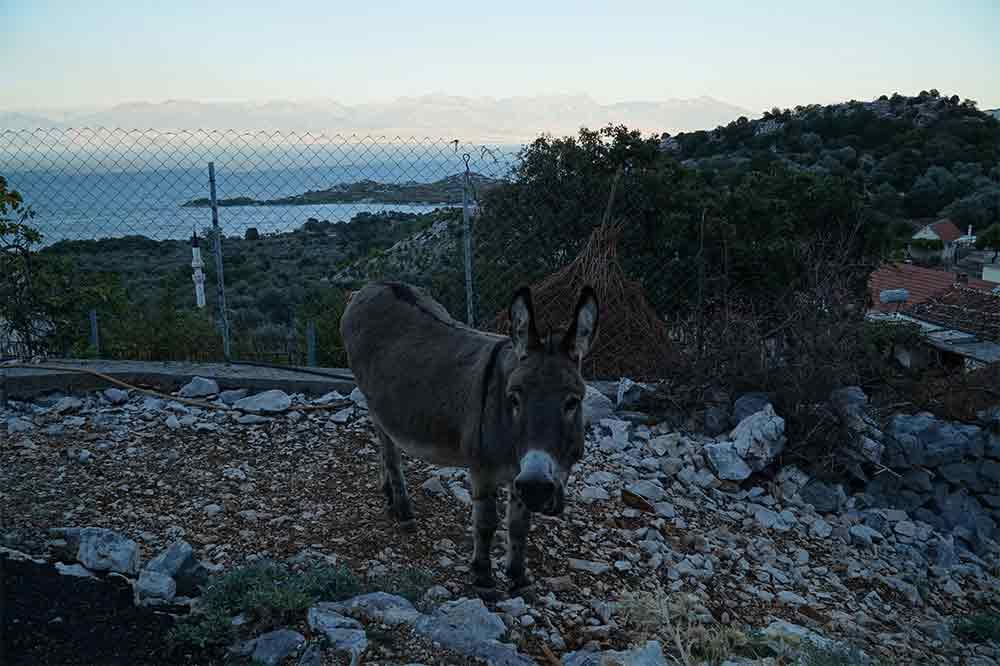 Černá Hora, Skadarské jezero