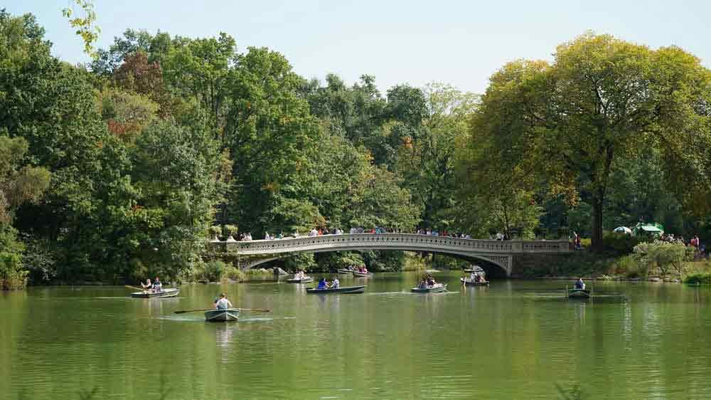 USA, New York, Central park, Manhattan