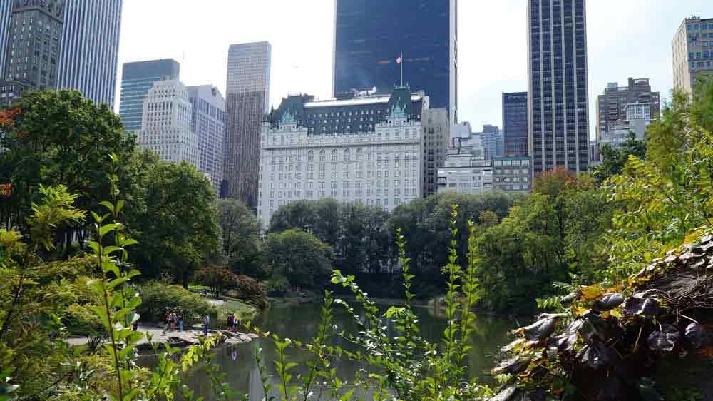 USA, New York, Central park, Manhattan, hotel Plaza